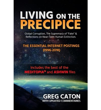 Living on the Precipice: Global Corruption, the Supremacy of Fake, and Reflections on Near Term Human Extinction -- (Ebook, 2018)